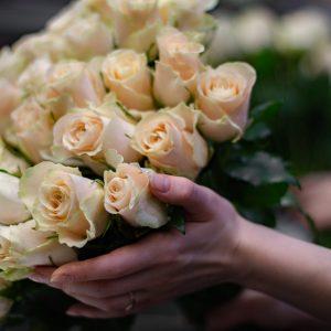 Моно кенійських троянд 063